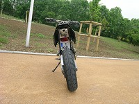 Derbi Supermotard Acerbis Powered de Kenny - 5