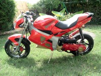 GILERA Dna Red Hebo Racing de SoadSugar - 4