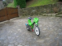 Prototype Green MHR Mob de Florent42 - 8
