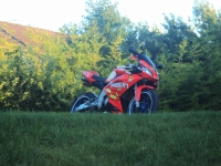 Aprilia RS 50 Limited Edition Spains (perso-17425-10_08_05_19_26_21)