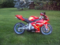 Aprilia RS 50 Limited Edition Spains (perso-17425-10_08_05_19_28_45)