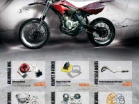 Beta RR 50 SM Racing Demon Projet (perso-17786-10_12_24_14_36_00)