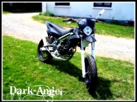 Avatar du Derbi Senda R DRD X-treme Black And White