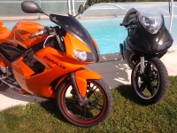 Yamaha TZR 50 Orange And Black (perso-19506-f8e8a1a6)