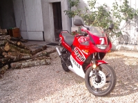 Yamaha TZR 50 Red Baron (perso-1951-07_11_21_20_08_56)