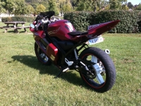 Yamaha TZR 50 Red Diamond' (perso-19644-11_09_25_15_28_43)