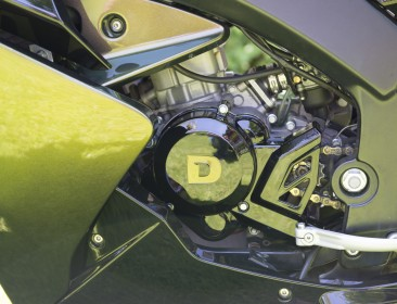 Derbi GPR 50 Racing GPR HardGreen By DPX (perso-21100-2b702228)