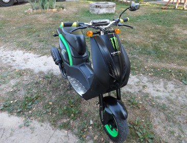 Avatar du Peugeot Ludix One Monster Energy Furous