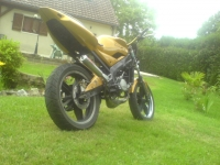 Yamaha TZR 50 Gold (perso-7809-08_07_30_17_30_16)