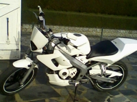 Yamaha TZR 50 R6 White Power (perso-8977-09_03_09_21_21_14)